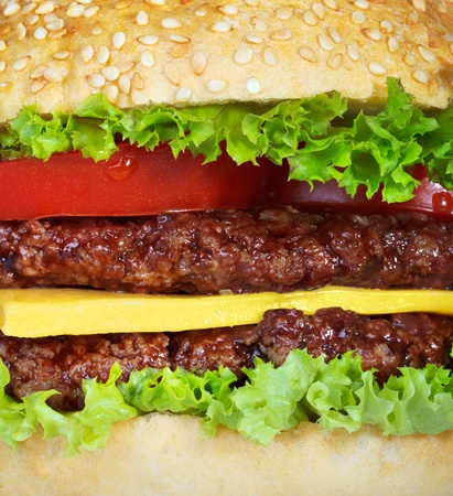 close up food: hamburger closeup Stock Photo