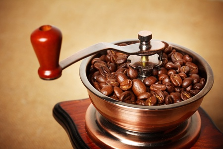 coffee beans in grinder photo