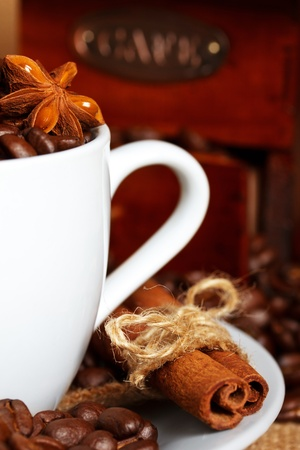 anisetree: coffee and spices with grinder on background