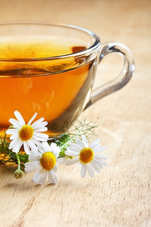 herbal chamomile tea  photo
