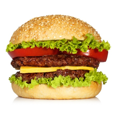 burger on bun: hamburger