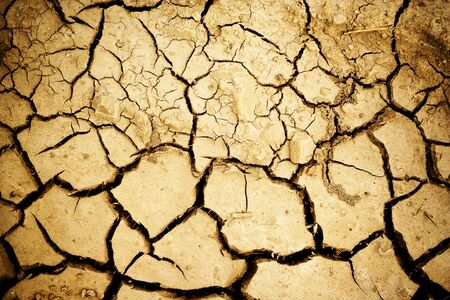 cracked earth: cracked ground texture Stock Photo