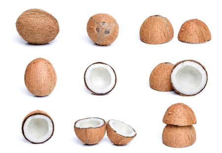 Coconut set photo