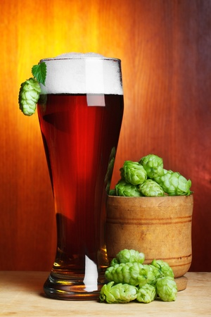 beer with fresh ripe hop still-life photo