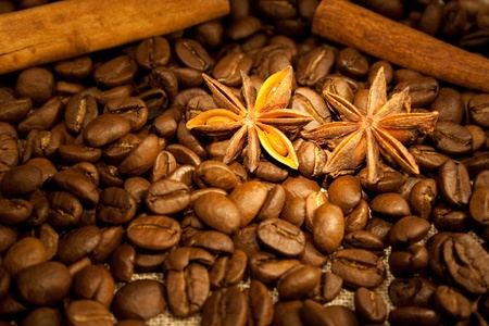anisetree: coffee beans and spices - cinnamon and anisetree