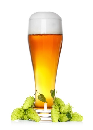 beer glass with fresh green hop photo