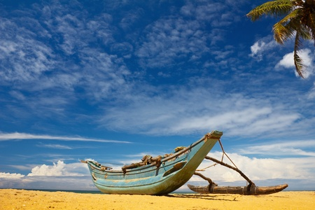 sri: boat and coconut palm tree on tropical coast Stock Photo