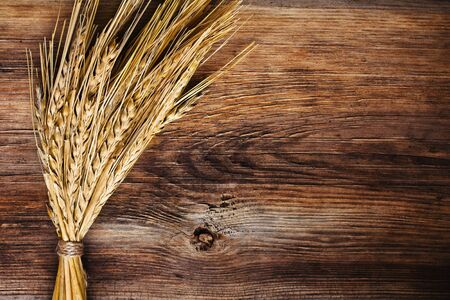 bunch of wheat ears on wood background Stock Photo - 12934128