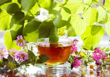 tannin: Herbal tea with fresh herbs
