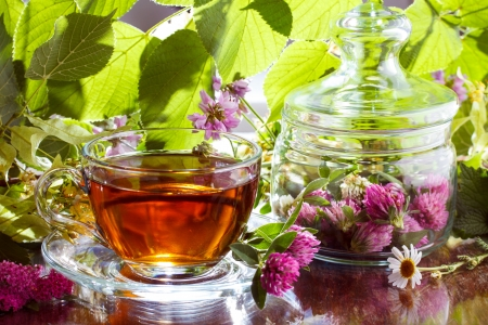 Herbal tea with clover and chamomile Stock Photo - 15136334