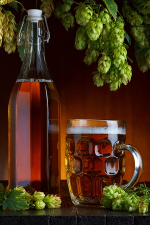 Beer with brewery hop and wheat still life photo