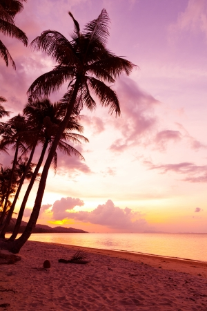 Tropical beach Stock fotó