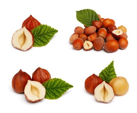 Filbert nut set isolated on white background photo