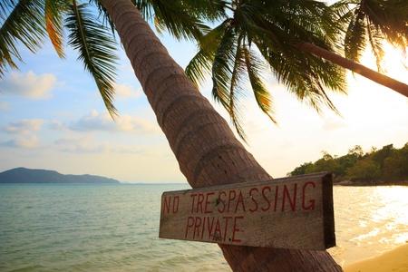 trespassing: No trespassing sign on tropical palm tree at beach