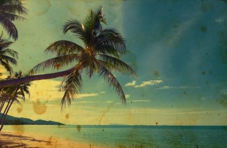 Retro stylized tropical card photo