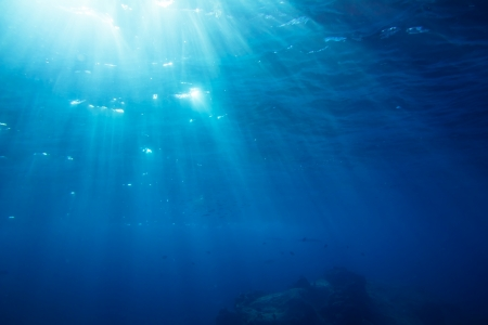 Underwater shot with sunrays and fishes in deep tropical sea