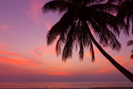 Tropical beach with palm tree at sunset, Thailand Imagens
