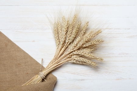 burlap sack: Bunch of ripe wheat on wooden table