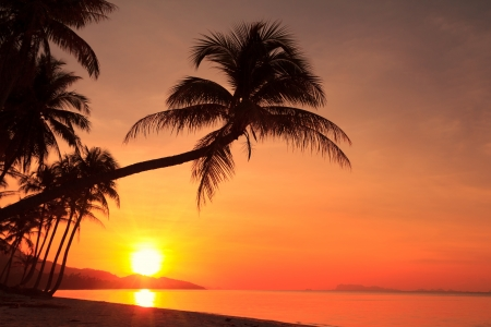 Sunset on tropical island Imagens