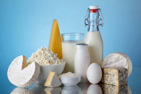 dairy product: Dairy products, milk, cheese, egg, yogurt, sour cream, cottage cheese and butter on blue background still life