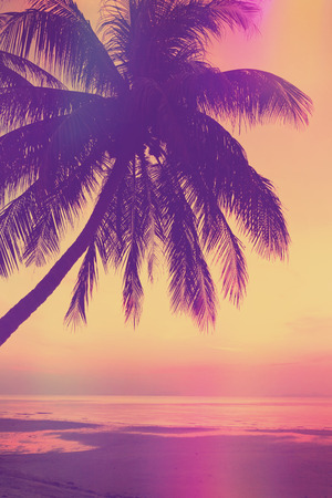 Vintage stylized tropical beach with palm tree at sunset Imagens