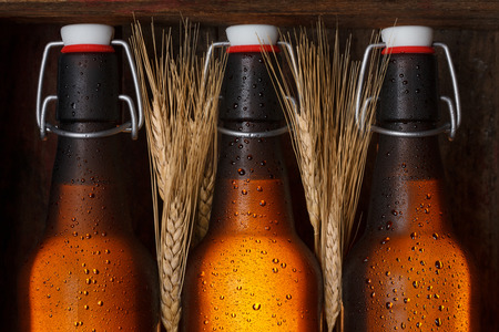 grunge bottle: Beer bottles with wheat stems in old wooden crate still life