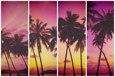 tropical paradise: Tropical sunset over sea with palm trees, vintage stylized and toned Stock Photo