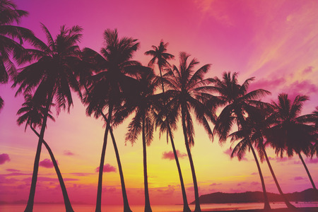 Tropické slunce nad mořem s palmami, Thajsko. Retro vintage filtruje.