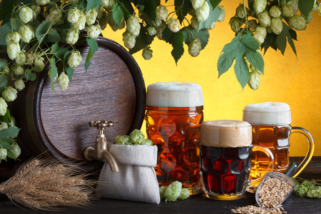Vintage beer barrel with two beer glasses and fresh hops, metal scoop with barley on wooden table still life photo