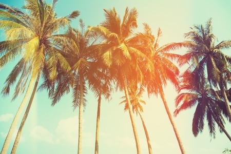 Palmen bij tropische kust, vintage afgezwakt en gestileerde