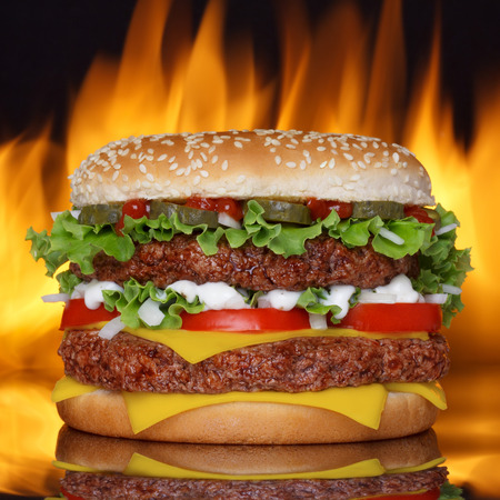 pollo a la brasa: Hamburguesa en fondo negro con refletion y fuego real en la espalda