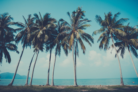 Retro stylized palm trees on summer tropical shore Stock Photo