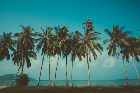 Retro stylized palm trees on summer tropical shore Imagens