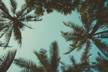 Retro gestileerde palmbomen over hemel achtergrond