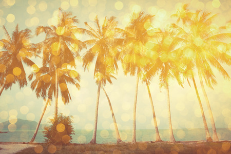 Palm trees on tropical beach with golden party glamour bokeh overlay, double exposure effect stylized