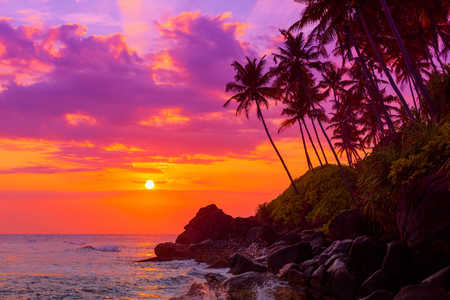 Tropical beach at sunset with palm trees shiny waves spashes