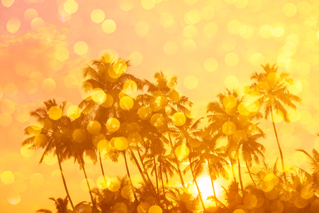 caribbean beach: Warm orange sunrise on tropical beach with sun rays through palm trees silhouettes and golden shiny bokeh double exposure effect