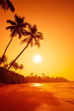 Zonsondergang op tropisch strand Stockfoto