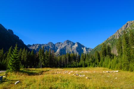 morskie: Tatra mountains in lesser Poland