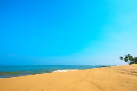 Beautiful beach with sand dunes on tropical island with coconut palm trees and clean sand at clear sunny summer day
