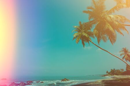 Empty remote tropical beach with coconut palm trees vintage color stylized with film flare light leak Stock Photo