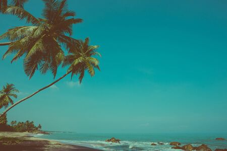 Empty remote tropical beach with exotic coconut palm trees vintage color stylized