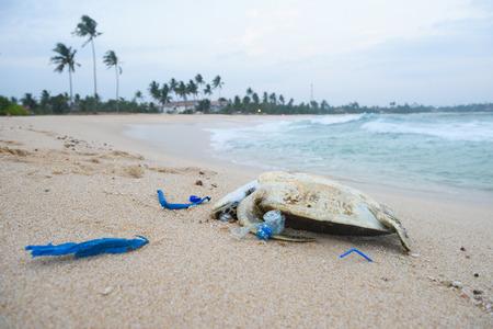 Dode schildpad met een plastic afval op oceaanstrand