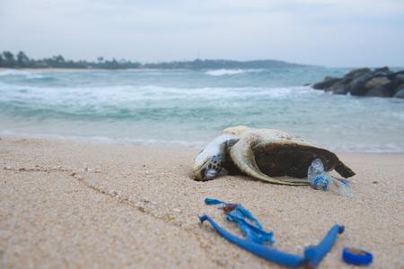Dead sea turtle on the sand beach among ocean plastic waste Foto de archivo