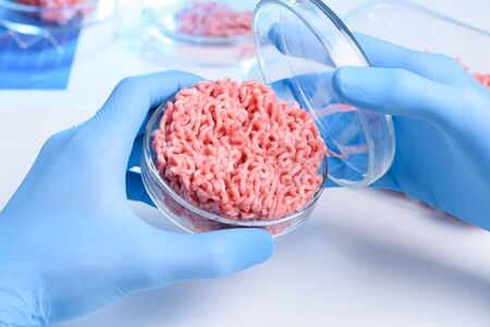 Artificial lab grown meat in petri dish in laboratory concept