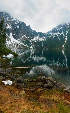 Mountain lake with tree underwater vertical panorama Stock Photo