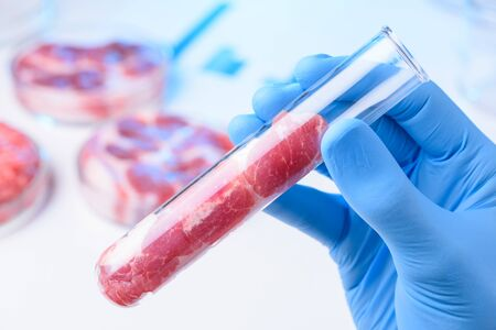 Raw red meat sample in laboratory glass test tube in scientist hands.