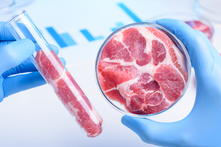 Raw red meat in scientist hands. Meat in laboratory test tube and in lab Petri dish. Stok Fotoğraf