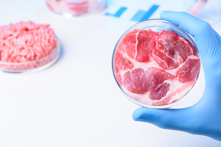 Meat in lab Petri dish in scientist hand