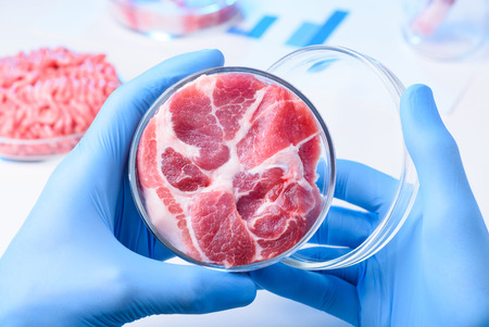 Scientist hold open lab Petri dish with raw meat